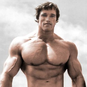 Arnold schwarzeneggers blueprint to muscle building zergnet arnold schwarzeneggers blueprint to muscle building malvernweather